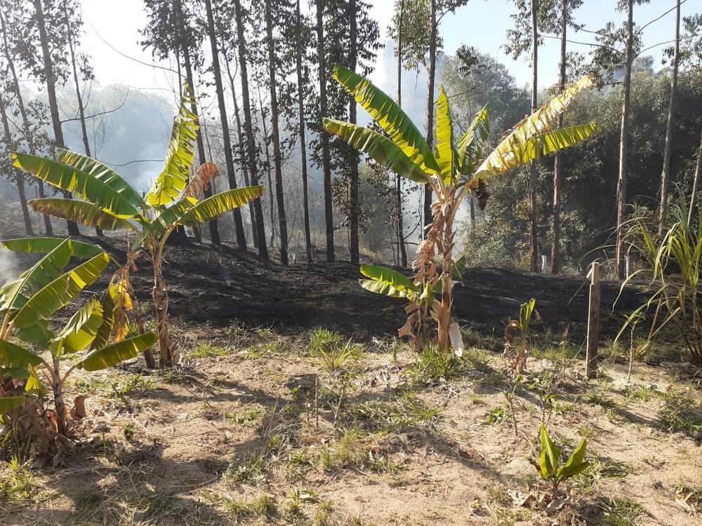 Incêndio atinge vegetação em três bairros de Garça e é controlado após 8h