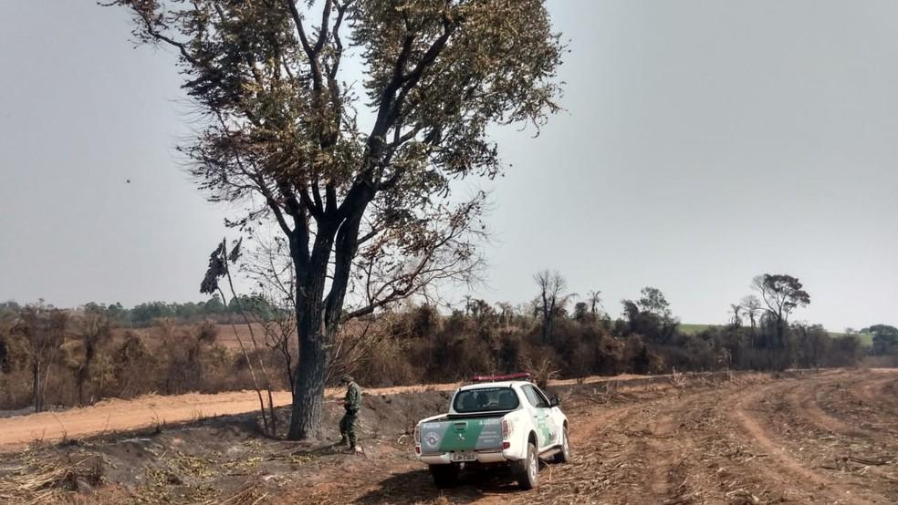 Polícia aplica multa de quase R$ 200 mil após satélite identificar queimada em área de preservação em Bastos